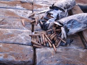 Foram apreendidas 360 munições de fuzil (Foto: Divulgação: Polícia Federal)