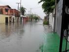 Fortaleza tem menor percentual de bueiros das grandes cidades, diz IBGE