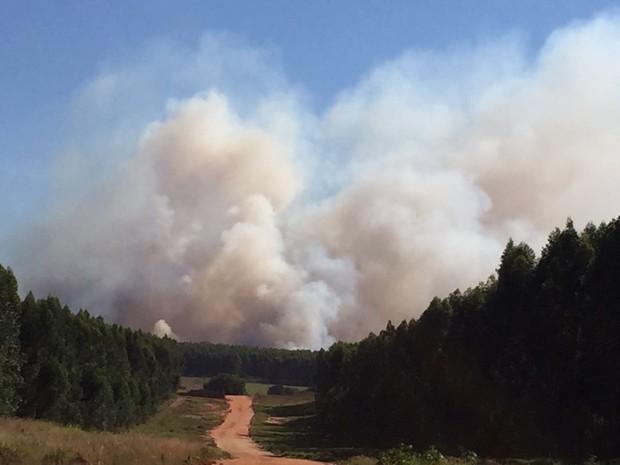 Fumaça de incêndio em Piratininga pôde ser vista a quilômetros (Foto: Giuliano Tamura/TV TEM)
