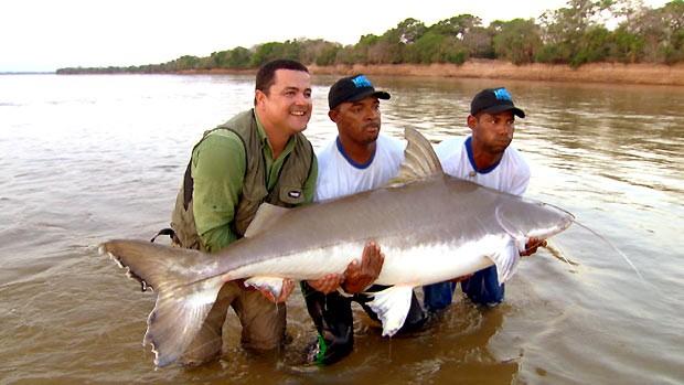 Equipe do Terra da Gente pesca uma piraíba com mais de 2 metros e 140 quilos (Foto: Reprodução / EPTV)