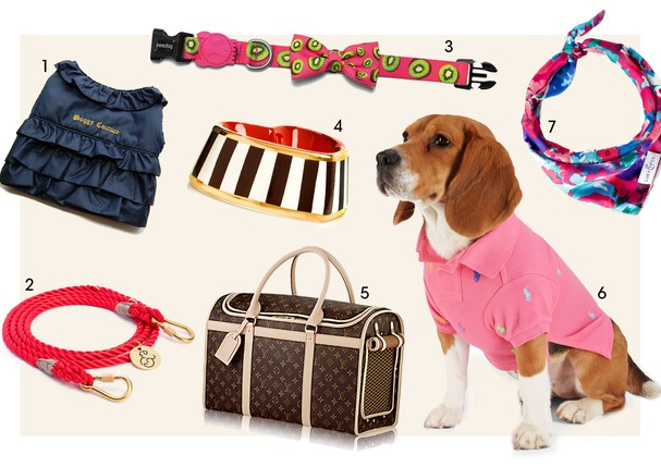 Acessórios para pets (Foto: Reprodução)