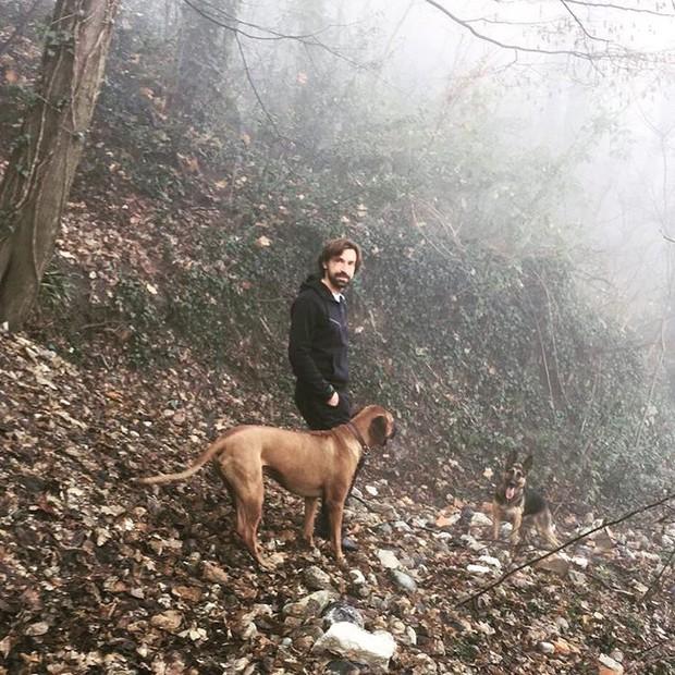 Andrea Pirlo e o seu cachorro (Foto: reprodução/Instagram)