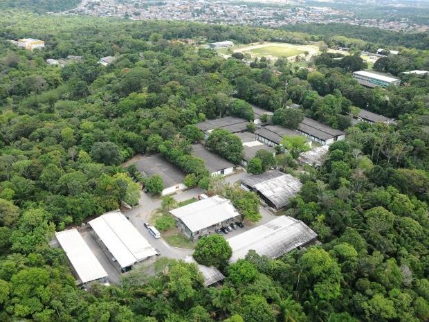 Área verde é rica em biodiversidade (Foto: Marcos Dantas / G1)