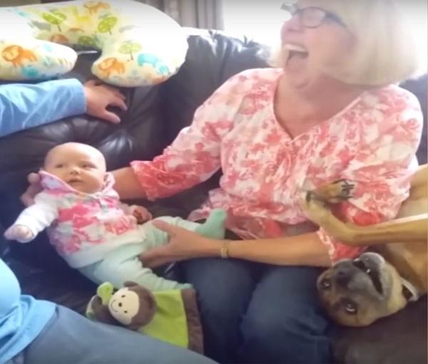 Cão disputa a atenção da dona com a chegada do novo membro da família (Foto: Reprodução Youtube)