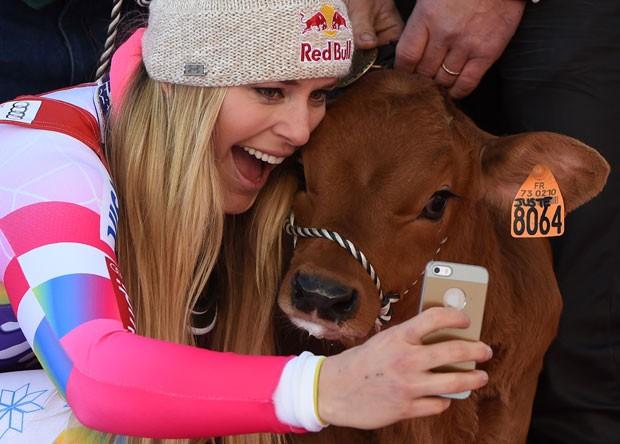 Lindsey Vonn fez selfie com vaca após vitória no esqui (Foto: Philippe Desmazes/AFP)