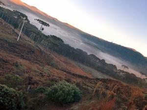 Serra de SC amanheceu com temperaturas baixas (Foto: Mycchel Hudsonn Legnaghi/São Joaquim Online)