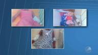 Destaques do dia: três crianças estão internadas após tomar remédio encontrado na rua