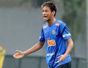 Neymar no treino do Santos (Foto: Ivan Storti / Site Oficial do Santos)