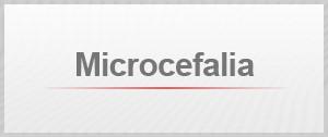 Selo Agenda Microcefalia (Foto: Editoria de Arte/G1)