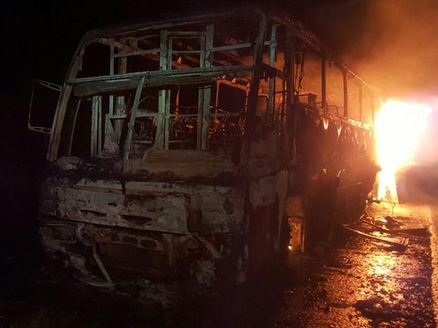 Veículo levava 13 passageiros, mas ninguém ferido, em Goiás (Foto: Divulgação/PRF)