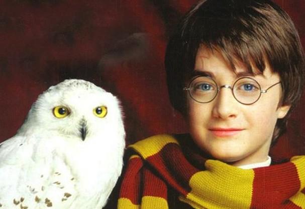 Own! <3 Quem será que fará o papel de Harry Potter, algum pitaco? (Foto: Divulgação)