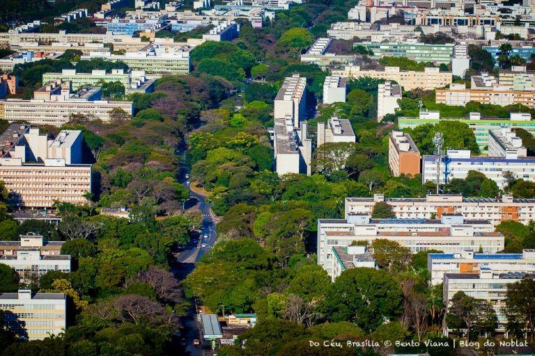 Rio verde na Asa Sul (Foto: Bento Viana)