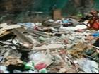 Calçada de escola da Zona Leste de SP vira depósito de lixo