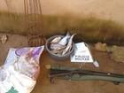 Pescador é preso com 15 quilos de  carne de capivara em Unaí