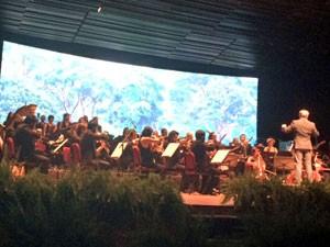 Rock in Rio apresenta evento Amazônia Live (Foto: G1)