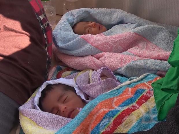Gêmeos prematuros foram internados em um hospital em Palermo (Foto: AP)