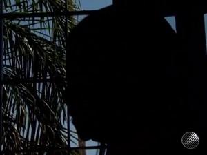 Criança sofre estupro em escola e colegas de 11 e 14 anos são suspeitos (Foto: Reprodução/TV Bahia)