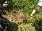 Corpo de garoto desaparecido há 8 dias é achado enterrado no RS