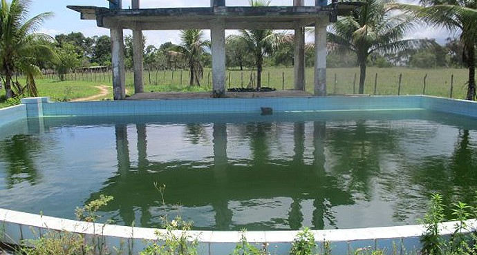 Piscina suja Bahia de Feira (Foto: Diego Ribeiro)