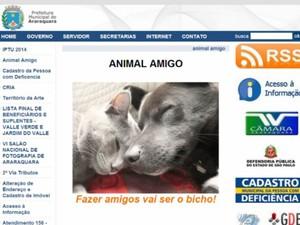 Site da Prefeitura tem fotos e dados de animais desaparecidos e para adoção em Araraquara (Foto: Reprodução/EPTV)
