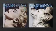 Fotógrafo recria imagens icônicas de Madonna com o próprio cachorro