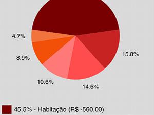 Finance organiza despesas em gráfico (Foto: Reprodução)