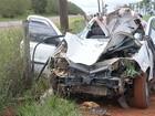 Motorista e passageiro morrem após carro atingir cavalo em rodovia
