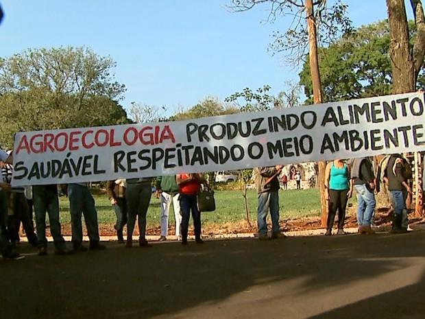 MST reivindica área pública para reforma agrária e produção de alimentos orgânicos (Foto: Paulo Souza/EPTV)