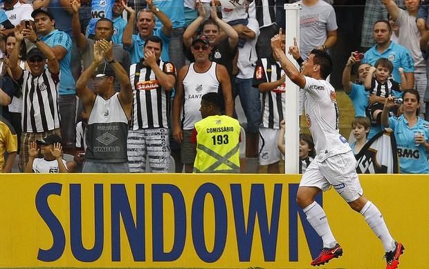 Bernardo comemora gol diante do Internacional (Foto: Ricardo Saibun / Santos FC)