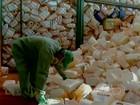 MT recolhe 24% das embalagens de agrotóxicos entregues em todo país