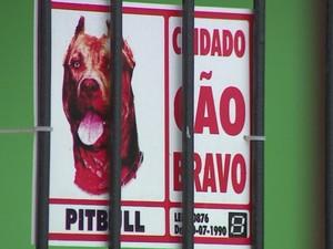 Idosa morre ao ser atacada pelo próprio cachorro no RS, diz polícia (Foto: Reprodução/RBS TV)
