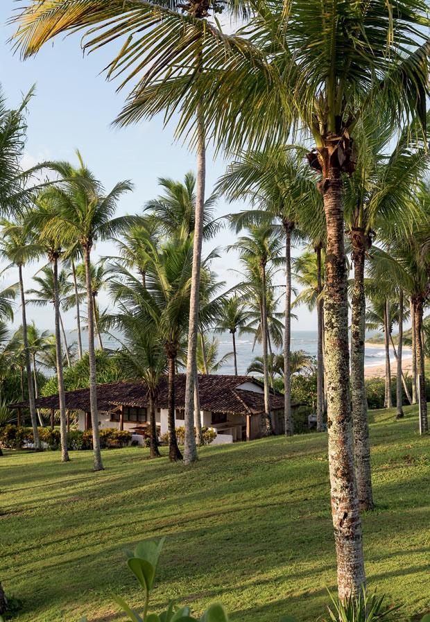 Jardim | A casa da praia fica a 30 m da areia. O jardim abriga coqueiros e plantas que Angela trouxe de vários cantos do país. A telha de barro que cobre a casa foi feita em forma rústica e é uma produção local (Foto: Evelyn Müller/Editora Globo)