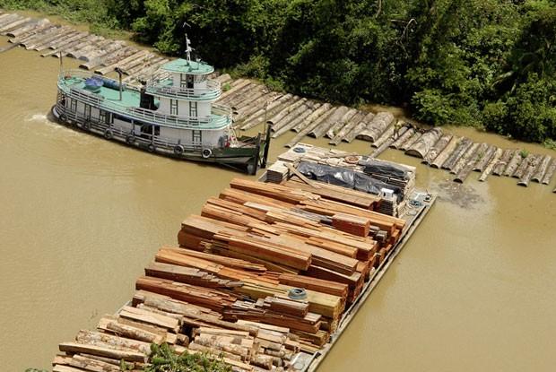 Imagem de 2010 mostra lote de madeira ilegal confiscado em Belém, no Pará (Foto: Divulgação/Paulo Santos)