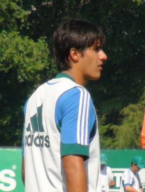 Thiago Martins Palmeiras (Foto: Sergio Gandolphi)