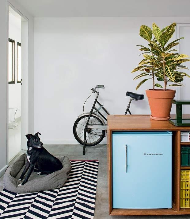 Projeto do arquiteto Mauricio Arruda vaso-croton-tapete-bicicleta-marcenaria-frigobar (Foto: Marcelo Magnani/Editora Globo)