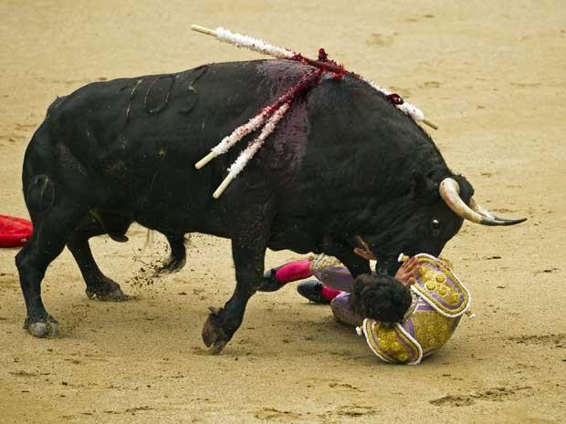 O animal chifrou a coxa direita do francês, o derrubou e tentou acertá-lo outras vezes. (Foto: Daniel Ochoa de Olza / AP Photo)