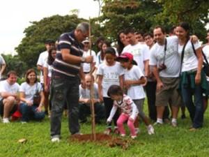 Árvores foram plantadas no jardim da praia em Santos, SP (Foto: Ronaldo Andrade / Prefeitura de Santos)