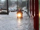 Número de pessoas atingidas por chuvas no Paraná sobe para 9 mil