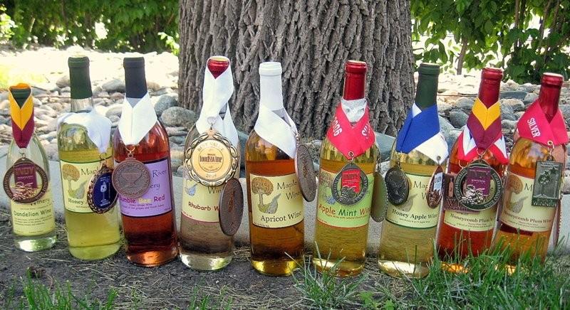 Vinho de abóbora (Foto: Divulgação )