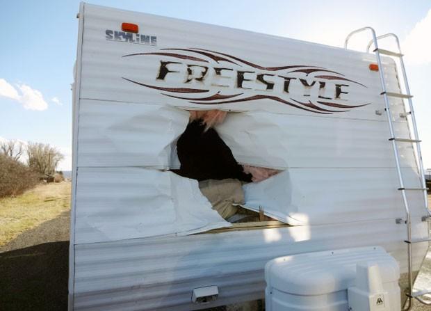 Veado atravessou a frente de um trailer após se chocar com veículo  (Foto: Garfield County Sheriff/AP)