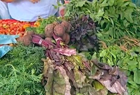 Alimentos orgânicos (Foto: Reprodução)