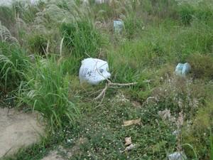 Mato alto toma conta de terreno onde saco foi encontrado em bairro de São Carlos (Foto: Priscila Cricenti / VC no G1)