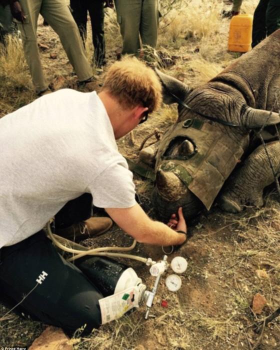 Harry em visita ao mesmo parque no início deste ano (Foto: Reprodução Instagram)
