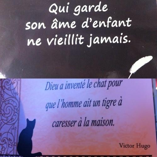 Cartão Postal Muito Além Da Torre Eiffeil Paris O Globo