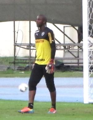 Andrey Goleiro Botafogo (Foto: Gustavo Roststein)