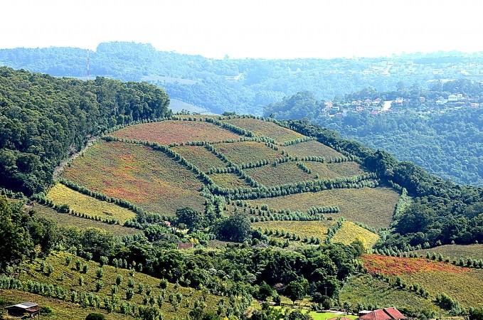 Bento Gonçalves (Foto: Prefeitura de Bento Gonçalves)