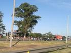 Moradores bloqueiam BR-290 na região das ilhas de Porto Alegre