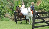Noiva chega a cavalo e cão leva aliança aos noivos no interior de SP (Daniel Corrá/G1)
