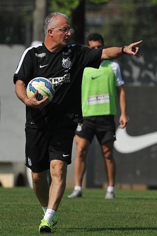 Dorival Júnior, técnico do Santos (Foto: Ivan Storti / Divulgação Santos FC)