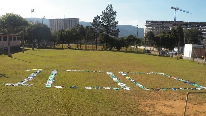 Periquito Mogi Palmeiras coleção camisas (Foto: Arquivo Pessoal / Periquito de Mogi)